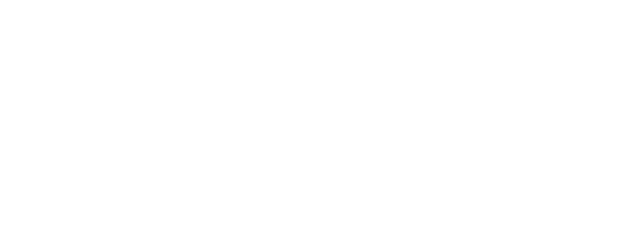 rvws-logo-footer